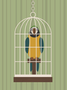 Bad amazon parrot behaviors are often due to cage size and placement