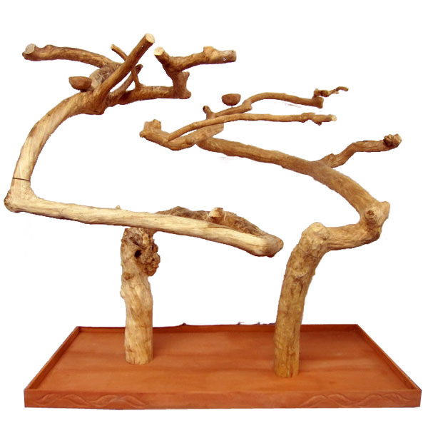 Double Java Wood Tree Playstand For Parrots And All Birds