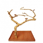 large java wood tree
