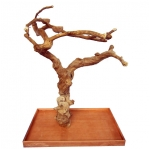 large carved java wood tree