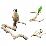 Java Wood Multi Branch Perch- Large