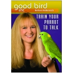 train your parrot to talk | parrot training guide